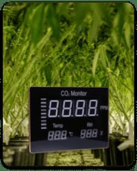 איזון טמפרטורה לחות ופחמן דו חמצני