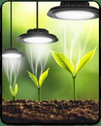 בחירת תאורה בשלושה שלבים פשוטים