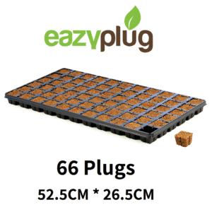 מצע הנבטה: 66 Eazy Plug